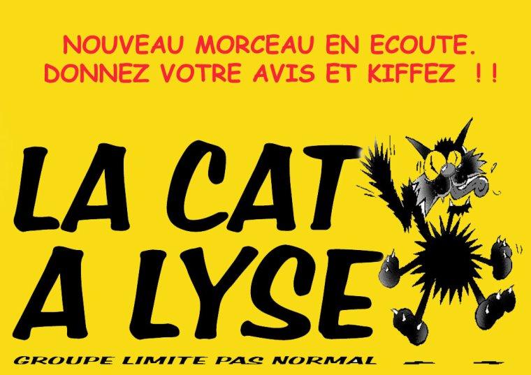 LA CAT A LYSE / LA FILLE DU COUPEUR DE JOINT (2011)