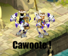 Cawoote-Team