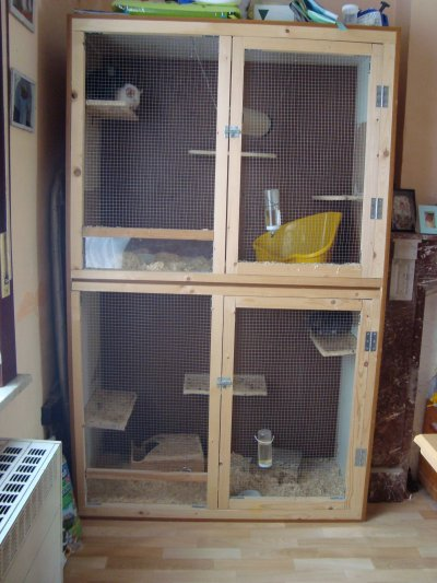cage faite maison a vendre mes pensionnaires