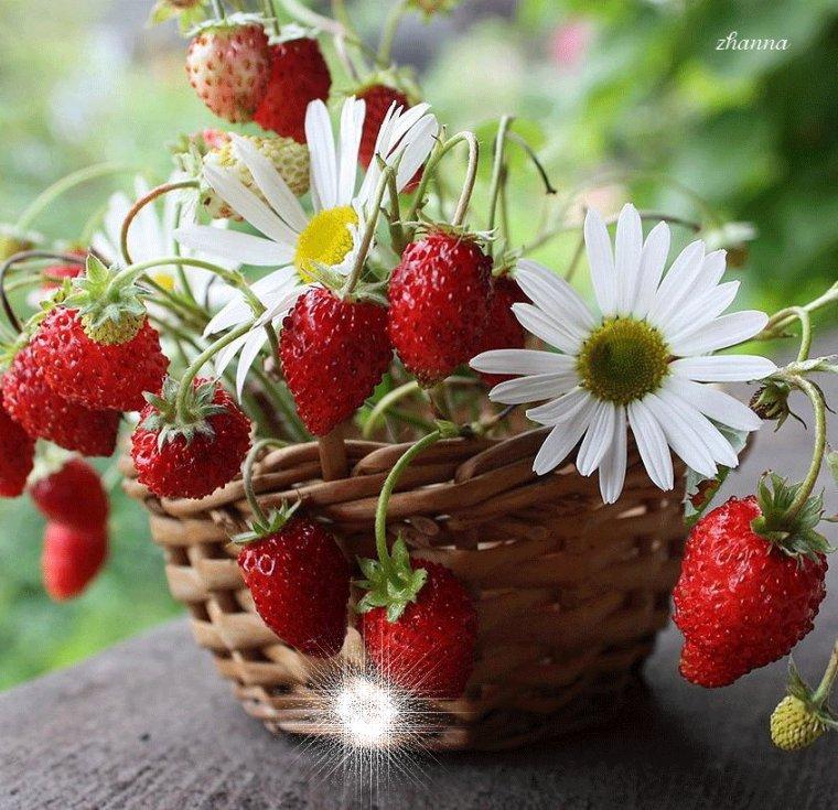 bonjour bonne et belle journée gros bisous ♥♥♥