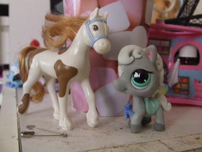 Cheval poney petshop mon univers petshop - Cheval petshop ...