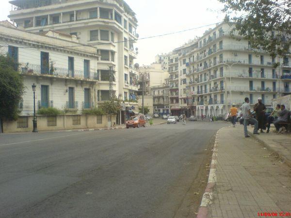 ALGER Telemly pres des beaux arts الجزائر العاصمة  +100 Fans