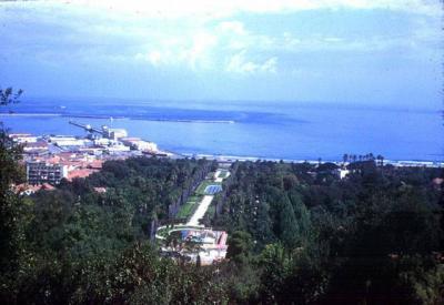 Alger jardin d 39 essai du hamma visite la capitale alger for Jardin d essai alger