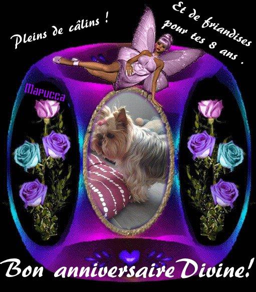 Bon anniversaire avec un peut de retard jolie Dinvine