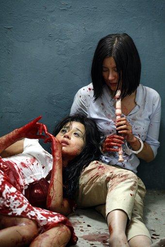 fantastique et paranormal asiatique: Les 101 films d