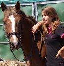Photo de amours-chevaux
