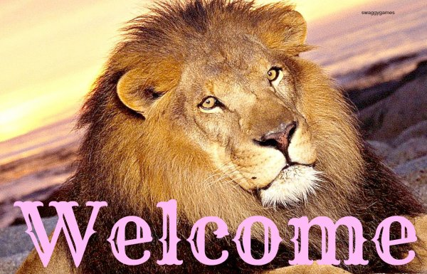 Bienvenue! :)
