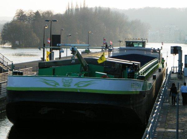 HELLBOY (B) Namur   GT.1291 - 80,00 m. 9,00 m. de retour d'Anh�e � vide en raison du gel ! Pas de chance pour son unique voyage du mois!