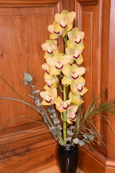 Branche orkidé