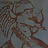 CHERUB-Newstory