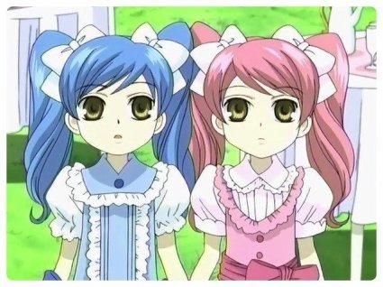 Hitachiin Hikaru et Kaoru