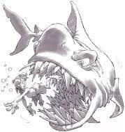 Un petit dessin rigolo de requin blanc en bande dessin e street41 - Requin rigolo ...