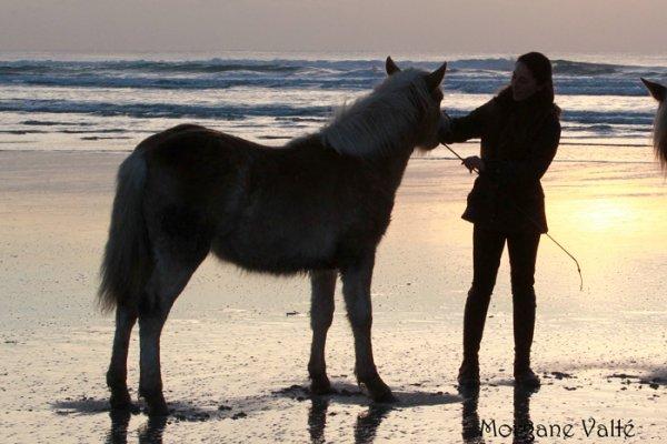 Na�ade et Sina� � la Torche - d�cembre 2012
