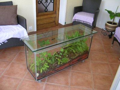 table basse terrarium de filiforge