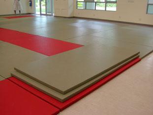 le tatami judo passion. Black Bedroom Furniture Sets. Home Design Ideas