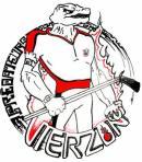 Photo de vierzonhockey