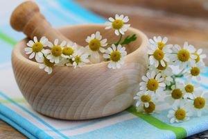 10 plantes pour soulager le mal de t�te