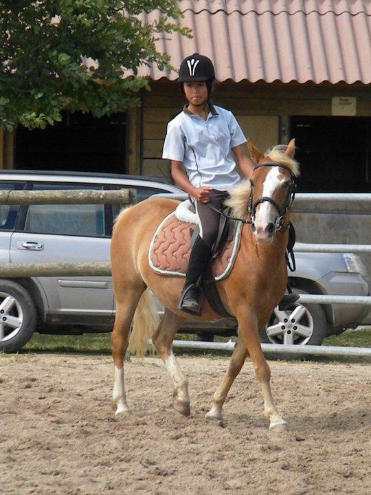 Blog de Prince Girouette Centre Equestre Du Bois Brulé Skyrock com # Centre Équestre Du Bois Brulé