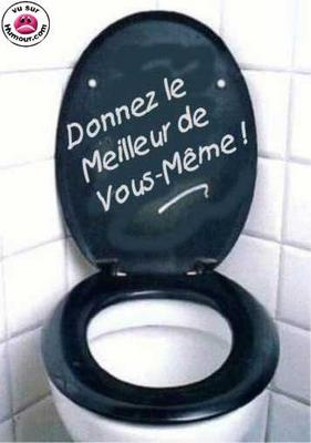 photo toilette marrante