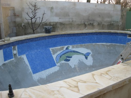 un joli dauphin en faience dans notre piscine il se baignera avec nous loll joeydu30000. Black Bedroom Furniture Sets. Home Design Ideas