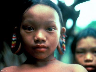 | combałs | peuple et localisation : penan, baram, sarawak, malaisia
