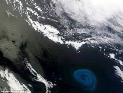 Un �norme vortex de courants sous-marins de plus de 150 km de large a �t� photographi� par un satellite de la nasa