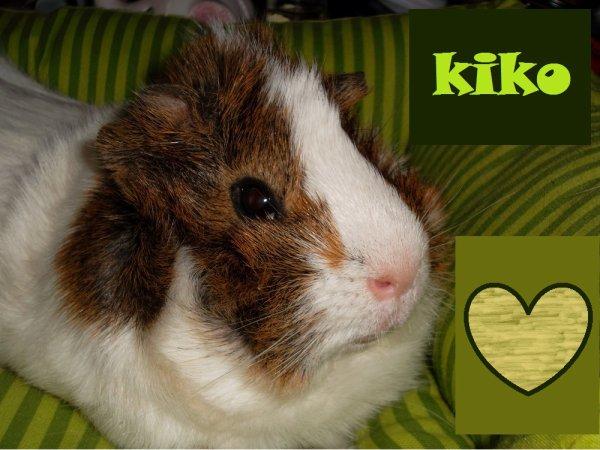 Pr�sentation Kiko