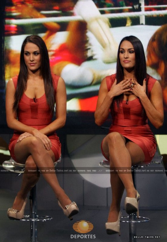 The bella Twins (2)