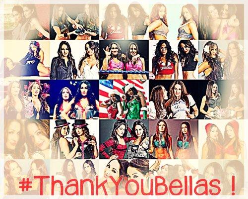 Merci les Bella Twins  :)