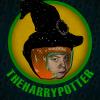 TheHarryPotter84