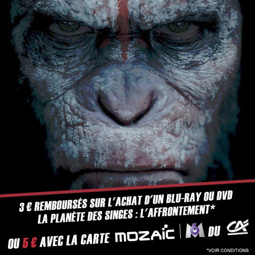 Jusqu'à 5¤ remboursés sur le DVD ou Blu-Ray de La Planète des Singes : L'Affrontement via l'appli !