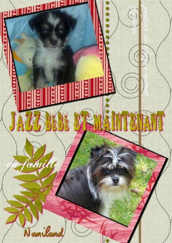 Jazz bébé et maintenant
