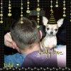 Ma baby love 6mois vous souhaites une tres bonne année 2011