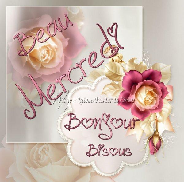 Bonjour les Ami(e)s!... ;)