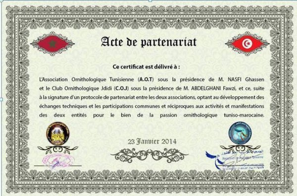 dedicace pour tt mes amis tunisiens qui partagent avec moi le monde de plume