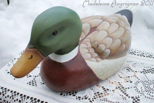 Le canard de Madeleine...
