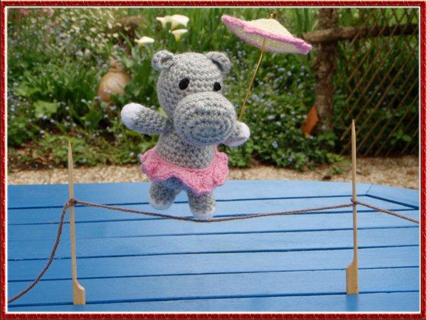 Hippopotame acrobate