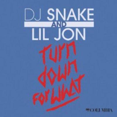 Turn Down For What de Dj Snake Feat. Lil'Jon sur Skyrock