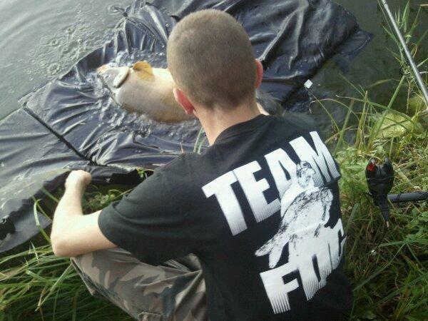 Team F.D.C represente le No-Kill