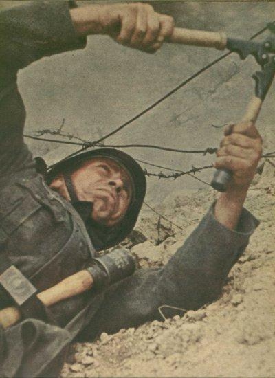 58 - La bataille de l'isthme de Parpatch et la prise de Kertch , le coup de maître de Manstein, du 8 au 16 mai 1942.
