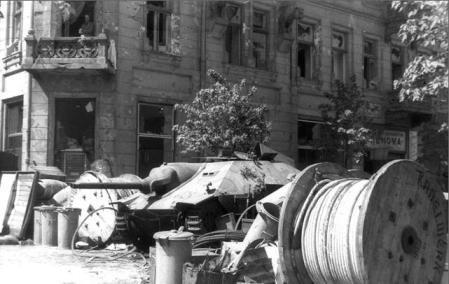 104 - L'insurrection de Varsovie : 1er août 1944 au 2 octobre 1944 , l'Armia Krajowa meurt sous les balles de la Waffen SS .
