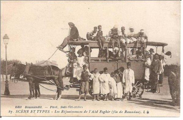A Sidi Bel Abbes : une rue nommée « Trig Rekaba » où tous étaient au service de l'équidé.