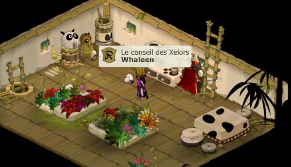 Whaleen Xelorette lvl 200