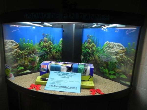 aquarium juwel 350 l angle aquarium juwel bombe angle 350 litres brun disponible. Black Bedroom Furniture Sets. Home Design Ideas