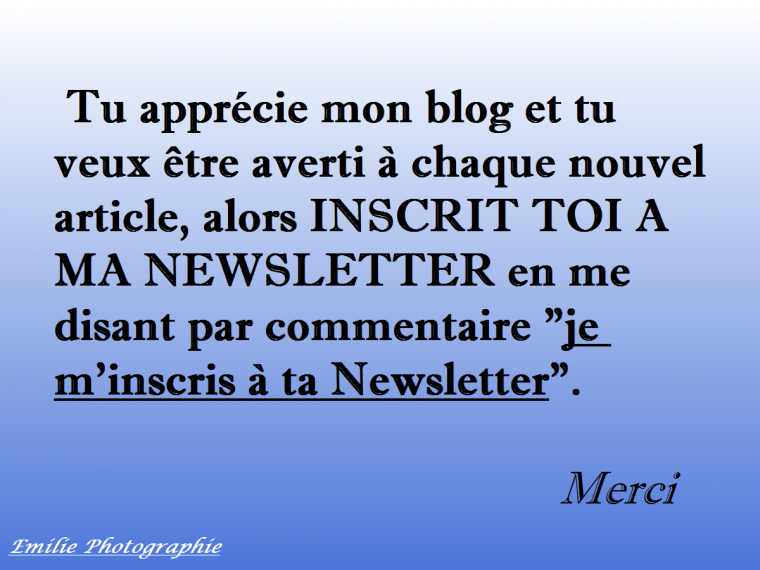 INSCRIT TOI A MA NEWSLETTER