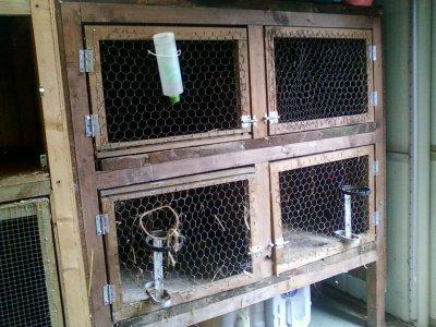 Cage fait maison bienvenue chez les pouickeurs de vinch for Abreuvoir lapin fait maison