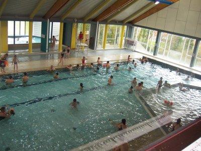 La piscine de mouscron l 39 univers des petits vertus for Piscine des dauphins mouscron
