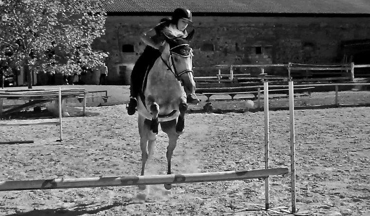 « Mon cheval est extrêmement poli : il a attendu, pour faire tout ce qu'il savait déjà faire, que je sois capable de le lui demander. »