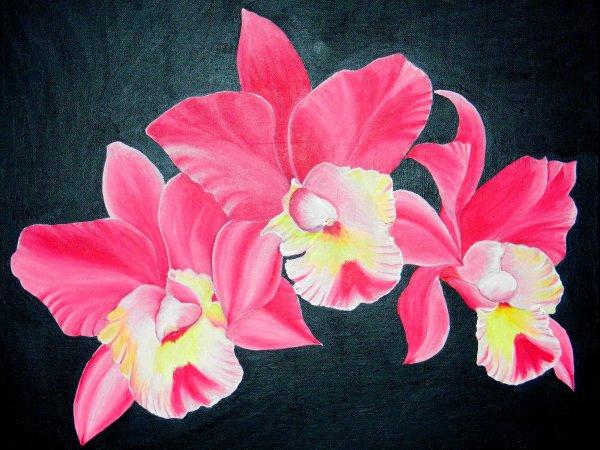Toile 55x46 en lin, Orchid�es sur fond noir m�tallis�