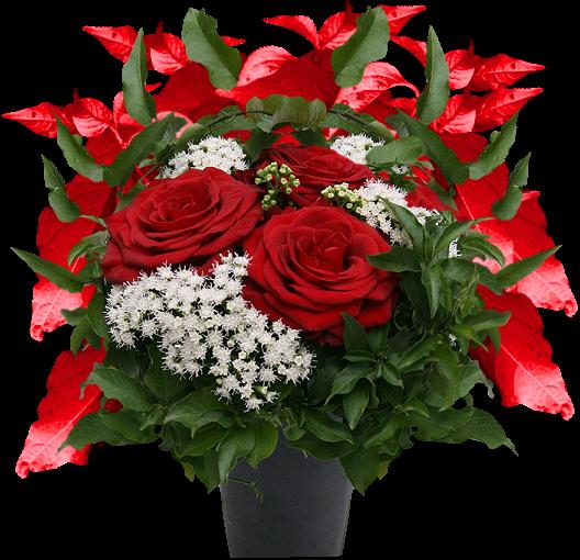 Je vous offre des fleurs mon univers que je partage avec for Offre des fleurs